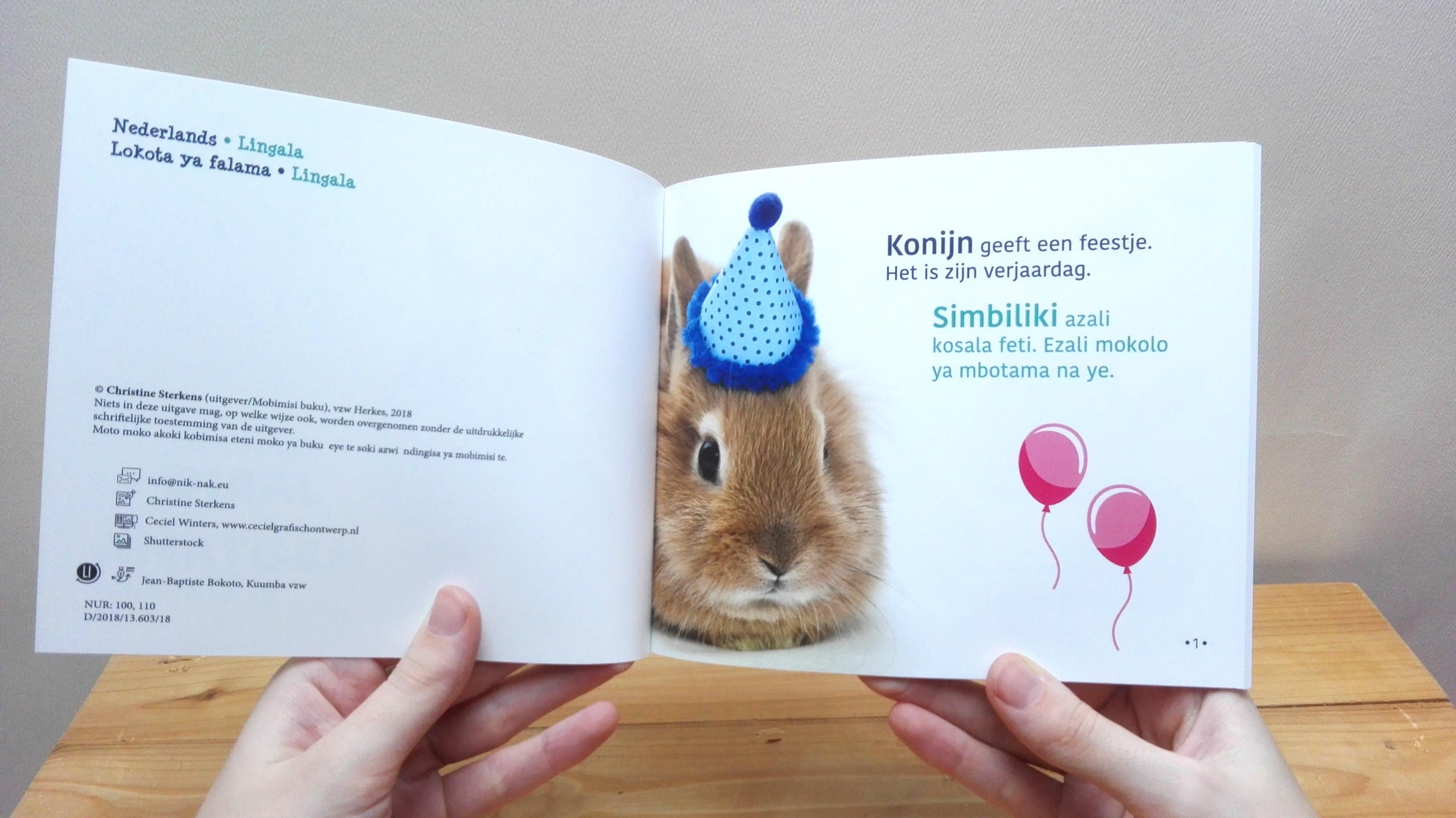 Rabbit S Birthday Nl Li Nik Nak