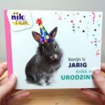 Konijn is jarig met Pools - Tweetalig kinderboek van nik-nak